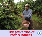 The prevention of river blindness